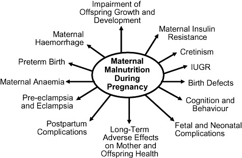factors that negatively effect fetal development essay Previous shoulder dystocia is a risk factor for future dystocia, and the delivery records should be reviewed for potentially modifiable risk factors (eg, fetal macrosomia, operative vaginal delivery) that may have predisposed to the injury.